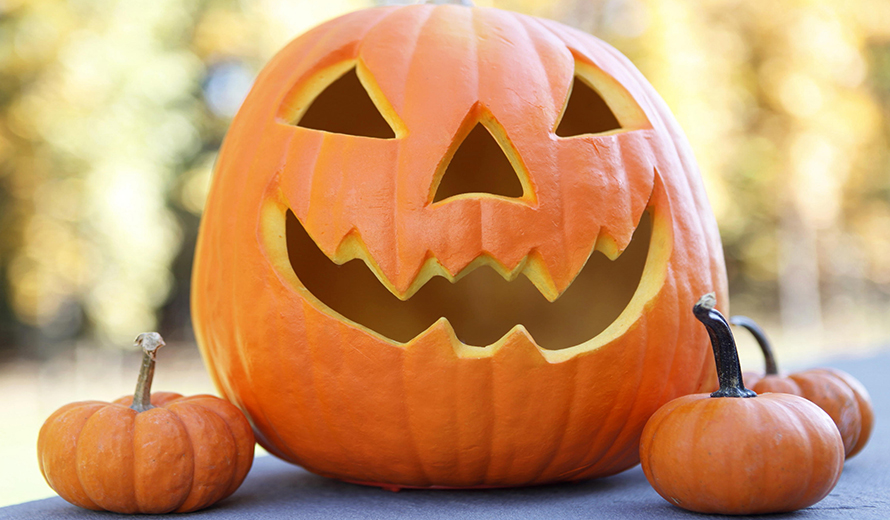 5 Things to Do on Halloween